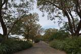 31601 Briggs Road - Photo 9