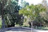 5 Urbino - Photo 40