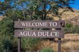 35356 Sierra Vista Drive - Photo 49