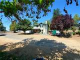 49220 Forest Springs Road - Photo 3