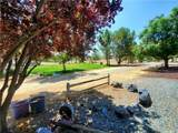 49220 Forest Springs Road - Photo 9