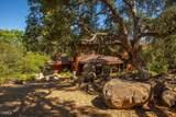 909 Del Oro Drive - Photo 21