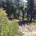 0 California Hwy 38 - Photo 18