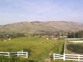 9229 Box Springs Mountain Road, Moreno Valley, CA 92557 (#IV17059872) :: Brad Schmett Real Estate Group