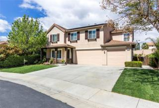 41699 Broad Oak Street, Murrieta, CA 92562 (#SW17061268) :: Fred Sed Realty