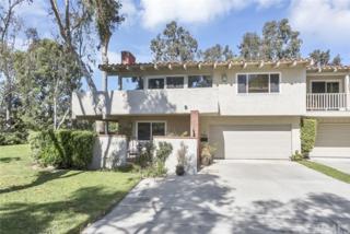 350 Vista Madera, Newport Beach, CA 92660 (#OC17061484) :: Fred Sed Realty