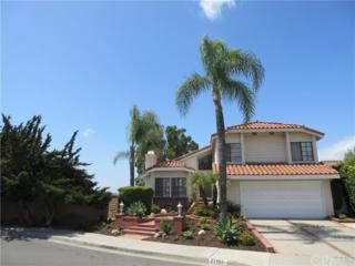 27151 Corcubion, Mission Viejo, CA 92692 (#OC17062156) :: Fred Sed Realty