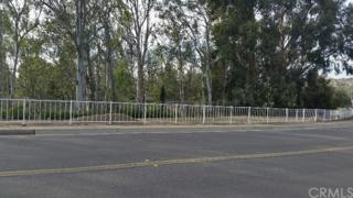 19391 Mesa Drive, Villa Park, CA 92861 (#OC17062278) :: Fred Sed Realty