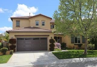 27014 Tube Rose Street, Murrieta, CA 92562 (#SW17063349) :: Brad Schmett Real Estate Group