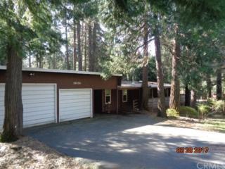 14024 Creston Road, Magalia, CA 95954 (#OR17063969) :: Allison James Estates and Homes