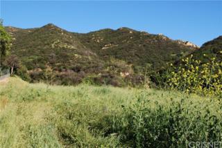 24632 Mulholland, Calabasas, CA 91302 (#SR17064529) :: Allison James Estates and Homes