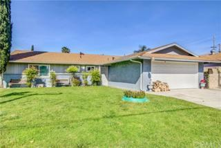 9724 Larch Avenue, Bloomington, CA 92316 (#CV17067343) :: Fred Sed Realty