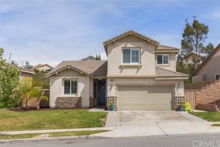 34076 Corktree Road, Lake Elsinore, CA 92532 (#SW17075190) :: Allison James Estates and Homes
