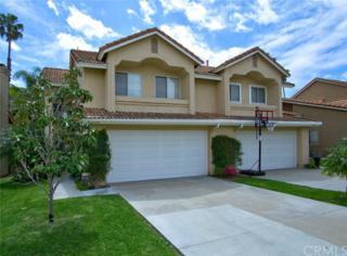 6064 E Hackamore Lane, Anaheim Hills, CA 92807 (#PW17082922) :: The Darryl and JJ Jones Team