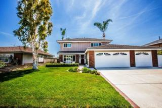 420 Nell Circle, Placentia, CA 92870 (#PW17086302) :: The Darryl and JJ Jones Team