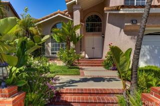 15 Northwinds, Aliso Viejo, CA 92656 (#PW17086860) :: Fred Sed Realty
