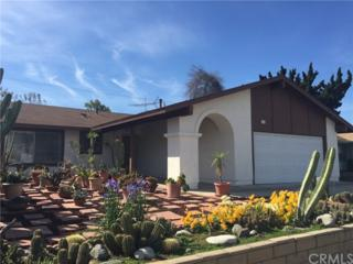 523 Pierpont Drive, Costa Mesa, CA 92626 (#SW17087240) :: Fred Sed Realty