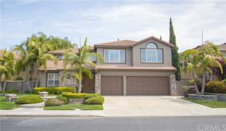 25 Pembroke Lane, Laguna Niguel, CA 92677 (#OC17087405) :: Fred Sed Realty