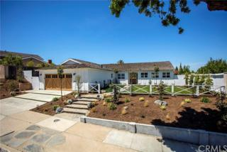 2815 Cassia Street, Newport Beach, CA 92660 (#NP17087757) :: Fred Sed Realty