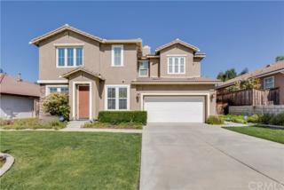 36033 Frederick Street, Wildomar, CA 92595 (#SW17087301) :: Allison James Estates and Homes