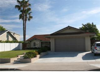 25192 Las Bolsas, Laguna Hills, CA 92653 (#OC17083925) :: Fred Sed Realty
