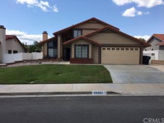 35521 Wanki Avenue, Wildomar, CA 92595 (#SW17087748) :: Allison James Estates and Homes
