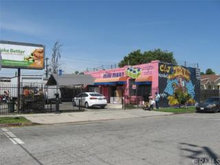 11228 Wilmington Avenue, Los Angeles (City), CA 90059 (#RS17088289) :: Fred Sed Realty