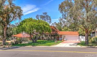 3609 Paseo Del Campo, Palos Verdes Estates, CA 90274 (#PV17088457) :: RE/MAX Estate Properties