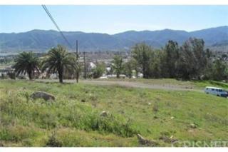0 Holborow Ave., Lake Elsinore, CA  (#SR17088596) :: Allison James Estates and Homes