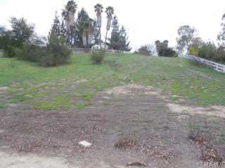30233 Del Rey, Temecula, CA 92591 (#SW17088950) :: Allison James Estates and Homes