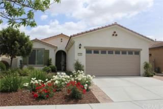 1498 Camino Hidalgo, Hemet, CA 92545 (#SW17089178) :: Allison James Estates and Homes