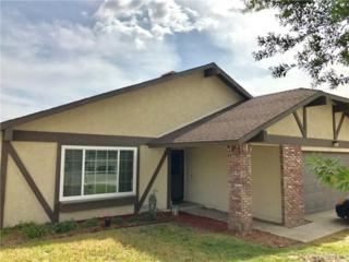 2371 Palmdale Circle, Hemet, CA 92545 (#SW17089395) :: Allison James Estates and Homes
