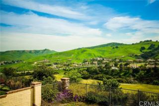 2923 Venezia, Chino Hills, CA 91709 (#AR17073570) :: Brad Schmett Real Estate Group