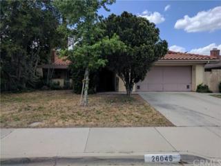 26045 Clemente Gardens Lane, Hemet, CA 92544 (#NP17089604) :: Allison James Estates and Homes