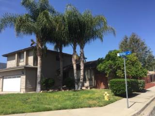 925 Dolly Drive, Lake Elsinore, CA 92530 (#SW17090420) :: Brad Schmett Real Estate Group