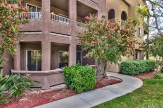 2500 San Gabriel Way #103, Corona, CA 92882 (#IG17090763) :: Brad Schmett Real Estate Group