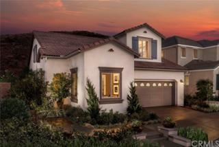 11603 Elderberry Lane, Corona, CA 92883 (#OC17091066) :: Brad Schmett Real Estate Group