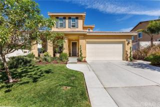 45914 Corte Mislanca, Temecula, CA 92592 (#SW17091191) :: Brad Schmett Real Estate Group