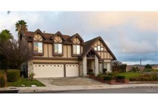 1172 Seneca Place, Diamond Bar, CA 91765 (#TR17091212) :: Brad Schmett Real Estate Group