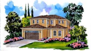 17196 Guarda Drive, Chino Hills, CA 91709 (#IG17091287) :: Brad Schmett Real Estate Group