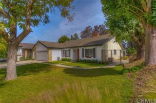 2447 Antelope Drive, Corona, CA 92882 (#PW17091277) :: Brad Schmett Real Estate Group