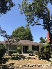 3828 Via Palomino, Palos Verdes Estates, CA 90274 (#PV17091585) :: RE/MAX Estate Properties