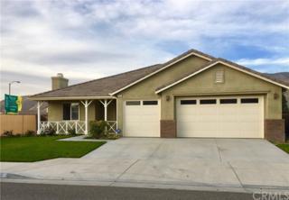 1852 Wheelbarrow Way, San Jacinto, CA 92582 (#SW17091722) :: RE/MAX Estate Properties