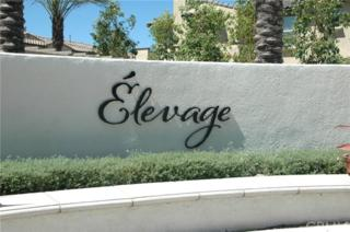 7275 Alicante Place #50, Rancho Cucamonga, CA 91739 (#CV17092304) :: Brad Schmett Real Estate Group