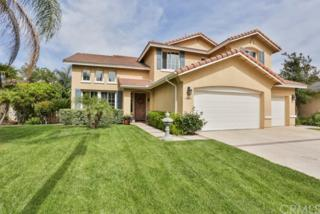 43810 Barletta Street, Temecula, CA 92592 (#SW17090544) :: Brad Schmett Real Estate Group