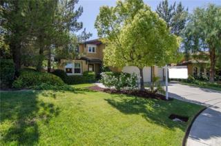 46114 Jon William Way, Temecula, CA 92592 (#SW17092693) :: Brad Schmett Real Estate Group