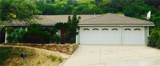 1529 Deerfoot Drive, Diamond Bar, CA 91765 (#TR17092258) :: Brad Schmett Real Estate Group
