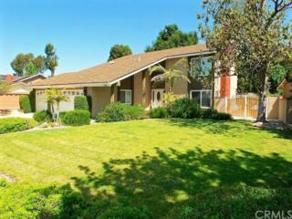 936 Golden Prados Drive, Diamond Bar, CA 91765 (#PW17090741) :: Brad Schmett Real Estate Group