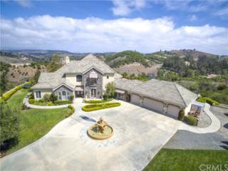 27255 Sycamore Mesa Road, Temecula, CA 92590 (#SW17092815) :: Brad Schmett Real Estate Group