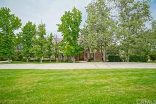 6585 Hawarden Drive, Riverside, CA 92506 (#IV17092781) :: Brad Schmett Real Estate Group